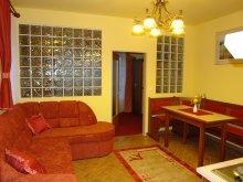 Accommodation Western Transdanubia, HoldLux Apartments