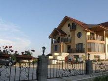 Accommodation Dicănești, Neredy Guesthouse