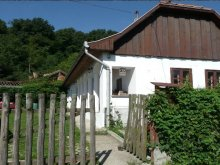 Cazare Irota, Casa de oaspeți Kálmán
