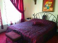 Accommodation Galița, Tichet de vacanță, Voila Hotel