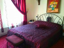 Accommodation Salcia, Tichet de vacanță, Voila Hotel
