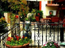Accommodation Grădina, Voila Hotel