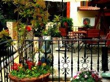 Pachet Rariștea, Hotel Voila
