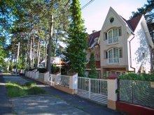 Accommodation Budapest, Villa Clara