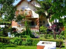 Accommodation Komárom-Esztergom county, Czanek Apartment