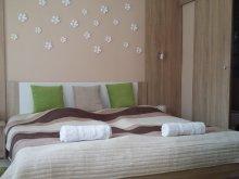 Accommodation Szécsisziget, Bundics Apartment