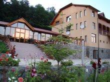 Accommodation Huzărești, Randra Guesthouse