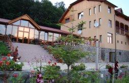 Apartman Boghiș, Randra Panzió