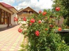 Pensiune Satu Nou (Glodeanu-Siliștea), Vila Speranța