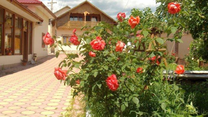 Speranța Villa Pleșcoi