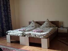 Accommodation Șieu, Silvia B&B