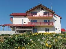 Apartment Dâmbovița county, Runcu Stone Guesthouse