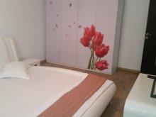 Szállás Copălău, Luxury Apartman