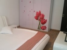 Szállás Slobozia (Onești), Luxury Apartman