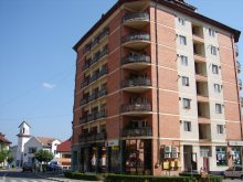 Cazare Sebeșu de Sus, Apartament Felix
