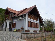 Casă de vacanță Fertőd, Casa de vacanță Angelhouse