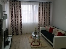 Accommodation Trebeș, Carmen Studio