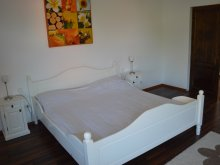 Accommodation Cămărzana, Pannonia Apartments