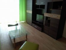 Accommodation Gura Siriului, Doina Apartment