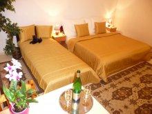 Accommodation Hungary, Balaton Art Apartment
