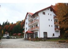 Accommodation Sângeorz-Băi, Păltiniș Hotel