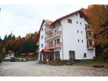 Hotel Runcu Salvei, Hotel Păltiniș