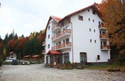 Hotel Valea Blaznei Ski Slope, Păltiniș Hotel
