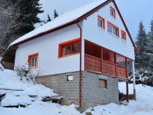 Accommodation Brădețelu, Orange House