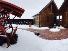 Accommodation Băile Homorod Ski Slope, Fanni Chalet 1