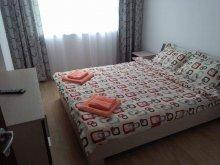 Cazare Vama Buzăului, Apartament Iuliana