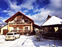 Accommodation Borșa, Maramureș Guesthouse