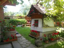 Accommodation Trei Sate, Árpád Guesthouse