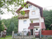 Accommodation Brădețelu, Arinul Guesthouse