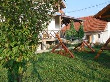 Villa Maros (Mureş) megye, Sura Răzoare Villa