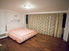 Accommodation Mușetești, Euphoria Hotel