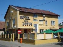 Cazare Săldăbagiu Mic, Hotel Lotus