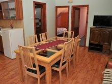 Accommodation Budacu de Sus, Bettina Apartment
