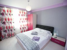 Accommodation Dolj county, English Style Apartment