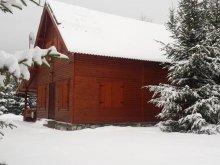 Vacation home Prisaca Dornei, Loki Guesthouse
