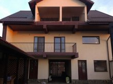 Accommodation Plopu, Giovani Guesthouse