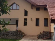 Villa Valea Caldă, Casa de la Munte Vila