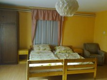 Kedvezményes csomag Tiszapalkonya, Véndiófa Vendégház 1