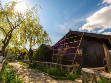 Accommodation Vulturu, Cristian Guesthouse