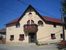 Accommodation Hălmăsău, Csáni Guesthouse
