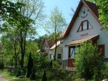 Apartament Révleányvár, Pensiunea Szarvas