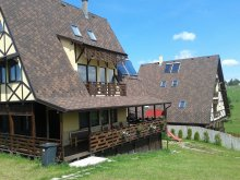 Accommodation Mărișel-Copcea Ski SLope, Vals Vila