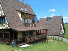 Panzió Dâncu, Vals Villa