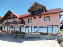 Panzió Pleșcuța, Brădet Panzió