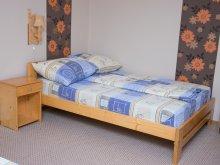 Accommodation Săldăbagiu de Munte, Eszter Apartment