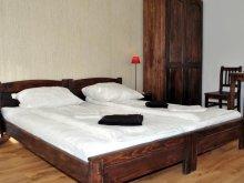 Accommodation Criț, Casa Adalmo Guesthouse